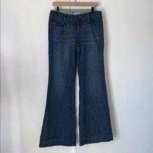 Anthropologie Level 99 Dark Wide Leg Jeans 30R